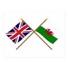 Cymru am byth Fabric Cushion Upholstery Craft Quilting Panel Welsh Flag