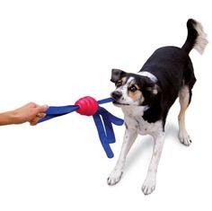 KONG TAILS KOIRAN KESTÄVÄ VETOLELU / KOIRATARVIKKEET - Koiran lelut ja aktivointi / Koiratarvikkeet - Kissan tarvikkeet - Lemmikkishop.net