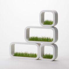grass frame.
