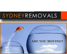 Expert Moving Companies Sydney has been proudly providing removals for over ten years. Visit us online now for a Free Quote or call 0411 722 Moving Companies, Bad Reviews, Helping Hands, Free Quotes, Good Company, How To Remove, Angel, Website, Angels