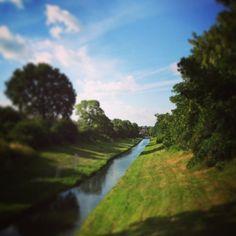 North London - New River Path - alissavaldenassi.com