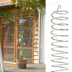 A highly functional Spiral plant support, perfect for climbing roses, wisteria, clematis, honeysuckle...