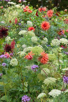 Beautiful Gardens, Beautiful Flowers, Prairie Garden, Cut Flower Garden, Pot Plante, Sloped Garden, Garden Bulbs, Backyard Garden Design, Garden Borders