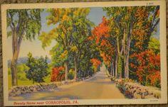 Beauty Scene Near Coraopolis Pennsylvania PA Postcard 1942