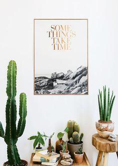 Cactus + cuivre + mur blanc + bois