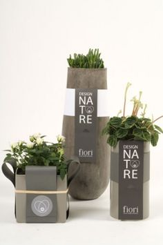 Sereal Designers - packaging - Fiori Present Packaging