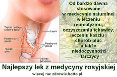 Najlepszy lek z medycyny rosyjskiej: leczy zaburzenia wydzielania hormonu tarczycy!