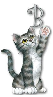 Items similar to Cat Greeting Card HIGH FIVE Tabby Cat - size. Handmade note card signed by the artist- blank inside on Etsy Grey Tabby Kittens, Greeting Card Shops, Cats Bus, Cat Cards, Cat Boarding, High Five, Tigger, Photos, Pictures