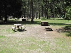 Yosemite National Park Wawona Campground, Yosemite National park, CA - GPS, Campsites, Rates, Photos, Reviews, Amenities, Activities, Policies, and Events - CampingRoadTrip.com