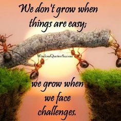 We don't grow when things are easy - Wisdom Quotes Good Morning Handsome Quotes, Good Morning Image Quotes, Good Morning Beautiful Quotes, Good Morning Inspirational Quotes, Good Morning Messages, Beautiful Gif, Morning Pictures, Uplifting Quotes, Morning Images
