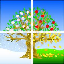 pick any object and portray it in the 4 seasons (tree, person, flower, landscape)