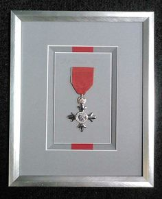Call even more attention to a special medal with a partial backing of ribbon in a color matching the medal. via Design Framing Shadow Box Frames, Frames On Wall, Military Shadow Box, Art Mat, Smart Art, Photography Projects, Frame Shop, Oeuvre D'art, Custom Framing
