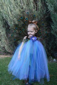 adb25b75dd Peacock Princess Tutu dress Halloween Costume beautiful dress with real  feathers