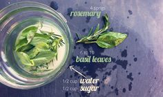 Basil Rosemary Gin Fizz - Part 3 of 4 | The Gray Boxwood