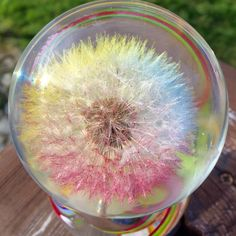 A personal favorite from my Etsy shop https://www.etsy.com/listing/288010259/colorful-large-dandelion-paperweight