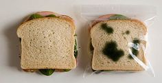 Anti-Theft Lunch Bags...keep the refrigerator bandits from stealing your lunch at work for good! :)