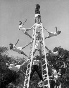 .acrobats