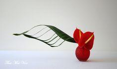 Just a simple free style with Anthurium and Aspidistra ~ Flowers & Ikebana Thai Mai Van (Facebook)
