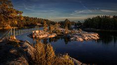 Stendörrens naturreservat / nature reserve