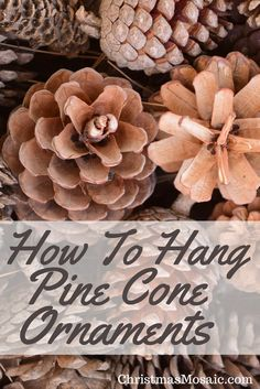 So, you've created your pine cone masterpieces. But how to hang pine cones on your Christmas tree? And what about pines cones and garlands? Pinecone Ornaments, Diy Christmas Ornaments, How To Make Ornaments, Christmas Decorations, Christmas Pine Cones, Christmas Time, Christmas Mosaics, Pine Cone Decorations, Pine Cone Crafts