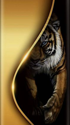 Wallpaper… By Artist Unknown… Source by Gold Tiger Wallpaper, Eyes Wallpaper, Bling Wallpaper, Phone Wallpaper Design, Black Phone Wallpaper, Phone Wallpaper Images, Apple Wallpaper Iphone, Nike Wallpaper, Animal Wallpaper