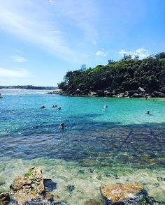 Like a paradise ☀️ #shellybeach #australia #beach #nature