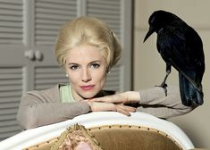Sienna Miller: Tippi Hedren for HBO's 'The Girl'! Check out these first look pics of Sienna Miller as Tippi Hedren in the upcoming HBO film The Girl! The actress plays the legendary film star in the… Sienna Miller, Tippi Hedren, 10 Film, Two Movies, Movies To Watch, Grace Kelly, Cher John, Claro Tv, Querido John
