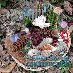 Fairy Garden Kit, Miniature Beach Garden, Fairy Garden Supplies ...