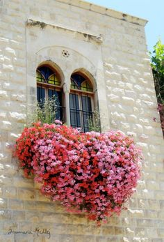 The Heart is a Bloom by Joumana Medlej - Lawn and Garden Today #windowboxes #gardens #gardening #flowerboxes Window Box Flowers, Window Boxes, Flower Boxes, Balcony Flowers, Window Sill, Heart In Nature, Pink Nature, Garden Windows, Belle Photo