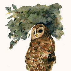The Grumpy Owl, Print of watercolor painting, Birds, Natural history, Halloween, autumn, Brown, Green,  limited edition, woodland, bird art https://www.etsy.com/treasury/NTM5ODkzNXwyNzIyNDE1NzU1/pleasure