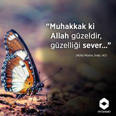 """Muhakkak ki Allah güzeldir, güzelliği sever…""""  (M265 Müslim, Îmân, 147)"""