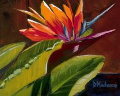 """Bird of Paradise"" by Diana Madaras. Appropriately named, this beautiful bird conjures thoughts of a romantic island paradise."