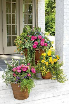 "These porch-step containers begin with bright pink and yellow zinnias. Cooler ""filler"" flowers, such as purple verbenas and blue calibrachoas are added to create contrast with texture and color. Opt for inexpensive plastic planters that are weatherproof a Plastic Planters, Flower Planters, Garden Planters, Flower Pots, Potted Flowers, Flowers Garden, Porch Planter, Flower Gardening, Flower Ideas"