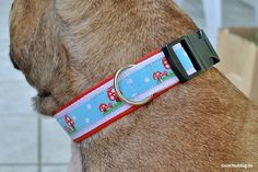 Hundehalsband selbst nähen