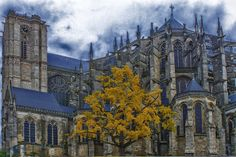 Cathedral Of Le Mans Sarthe France