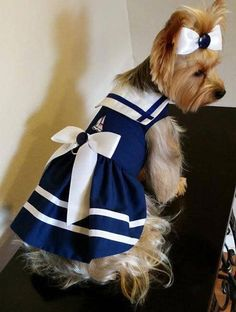 Dog Clothes - You've Found It! The Tips For Getting Together With Your Dogs Dog Coat Pattern, Cute Dog Clothes, Pet Dogs, Pets, Dog Clothes Patterns, Dog Safety, Sailor Dress, Pet Fashion, Girl And Dog