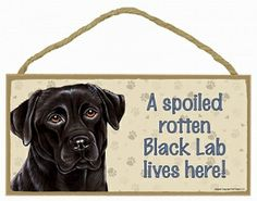 From SJT Made in the USA - A Spoiled Rotten Dog Lives Here Wooden plaques. This one is for Black Labrador. Many other dog breeds as well as cats (though only by color, harrumph!)