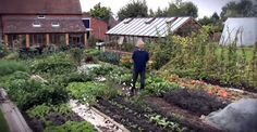 Watch as Charles Dowding turns an uncultivated plot of land into an abundant garden using the no-dig approach, all within a few months in 2013. This is the