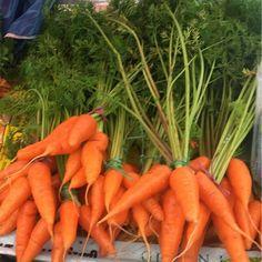 Fresh carrots #carrots #vegan #freshvegetables # #gogreen #veganfood #vitamins #vitamina #orange #brightcolors #antioxidant #naturefood #organic #rawfood