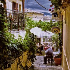 Athens Greece ~ had some of the best food in my life in a little street cafe!