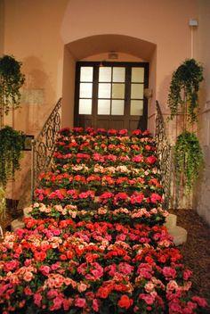 Girona Temps de Flors | 58a Exposició de flors, monuments, patis i jardins | Girona