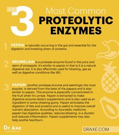 3 most common proteolytic enzymes - Dr. Axe