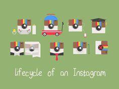 Instagram Lifecycle by Jason Watson (Kansas)