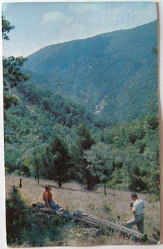 Postcard Smoke Hole Country, Petersburg, WV West Virginia 1950s