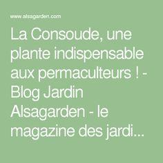 La Consoude, une plante indispensable aux permaculteurs ! - Blog Jardin Alsagarden - le magazine des jardiniers curieux