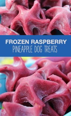 Sweet and tangy DIY summer dog treats! #dogtreats