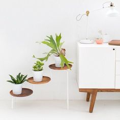 We thought this tiered IKEA plant stand looked pretty chic to start, but by adding wooden plates to the piece, Sugar & Cloth elevated the stand's style. Modern Plant Stand, Wood Plant Stand, Plant Stands, Interior Desing, Diy Interior, Ikea Plants, Deco Originale, Best Ikea, Diy Home
