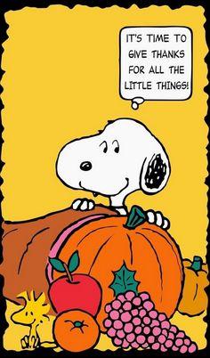 50 Beautiful Thanksgiving Greeting Ideas_18