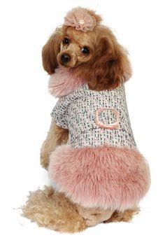 Cuccioli alla moda: cappottini, accessori e abbigliamento per il tuo cane - Style.it