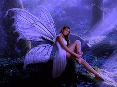 Beautiful Purple Winged Fairy In Forest Easel Plaque - home decor design art diy cyo custom Fantasy World, Fantasy Art, Fairy Wallpaper, Water Fairy, Fairies Photos, Types Of Fairies, Fairy Pictures, Free Pictures, Free Photos